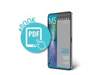 MS Report nr 4/2020 E-book